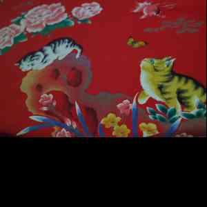 Authentiques sergés de cotons des années 1960 chinois