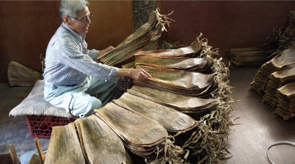 Le Bambou, une histoire japonaise couverture